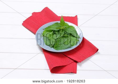plate of fresh nettle leaves on red place mat