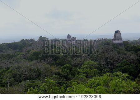 Tikal Mayan Ruins near Flores in Guatemala, jaguar temple is the famous pyramid in Tikal