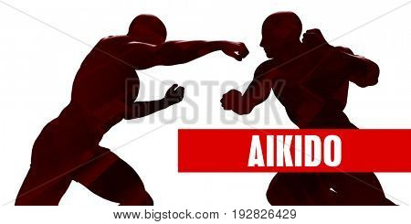 Aikido Class with Silhouette of Two Men Fighting 3D Illustration Render
