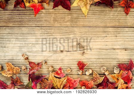Beautiful maple leaves on vintage wooden background border design. vintage color tone - concept of autumn leaves in fall season background