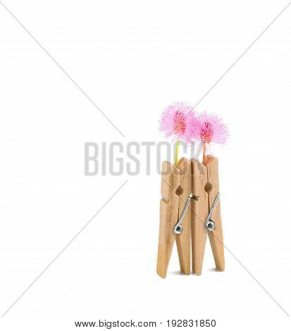 clothespins and pink flower on white background