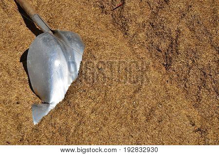 An image of an old broken grain shovel.