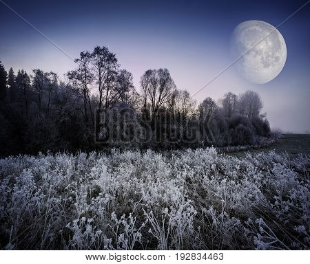 fogy winter morning - frozen landscape and moon