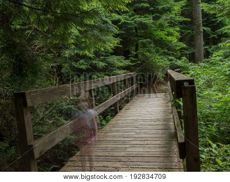 Ghost child standing over wooden bridge in forest
