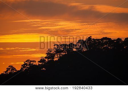 mountain range tropical rainforest canopy at southen of Thailand with more cloud sunset time