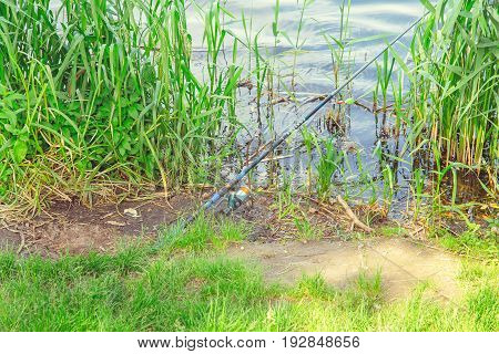 The fishing rod lies on the shore and catches fish
