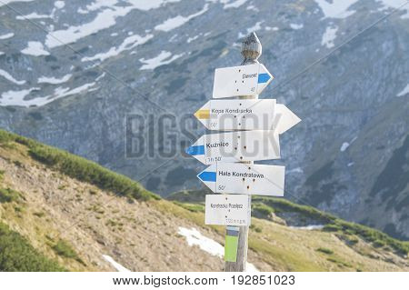 Poland Tatra mountains Signpost at Kondracka Przełęcz reamins of snow