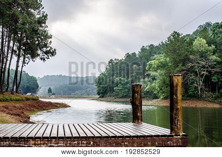 wood bridge ,pine tree forest near lake at Pang Oung national park