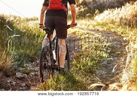 Rear view and close-up of the young cyclist riding bike on the summer field in the countryside. Attractive sportsman in the sportwear and with orange backpack. Horizontal photo and beautiful landscape. Concept of the healthy lifestyle.