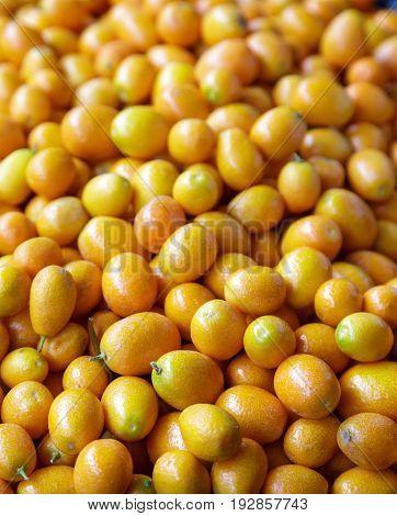 Many Kumquats in a Fruit Market Bin