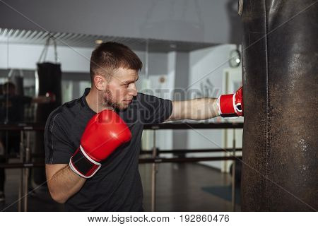 A young man is boxing in the hall. attentive sportsman in the boxing hall practicing boxing punches during training
