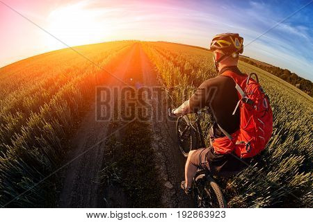 Rear view and close-up of the cyclist riding mountain bike on the summer trail. Young sportsman dressed in the black sportwear, with helmet and backpack. Beautiful landscape with sky and sunrise. Concept of the healthy lifestyle.