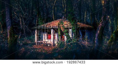 The cabin in the woods. A beautiful abandoned cabin in a dark wood