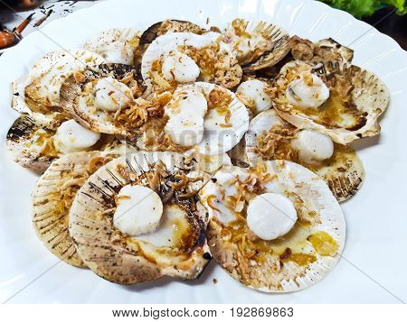 hot grilled scallops in white plate ,Thailand