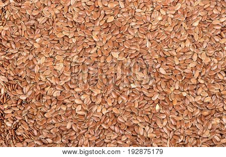 Background of the many flax seeds close up