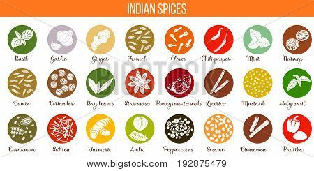 Big vector set of popular indian spices. white silhouettes. Color background. Ginger Nutmeg anise basil Cardamom Saffron Turmeric Amla Cinnamon etc For cosmetics store spa logo icon tag label