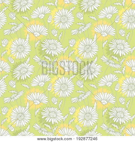 Vector seamless pattern with outline white Chamomile flower and leaves on the pastel background. Chamomile pattern in contour style for summer design, cosmetics, medicine, homeopathy, aromatherapy.