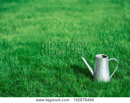 Silver watering can on the background of a blurry green lawn.