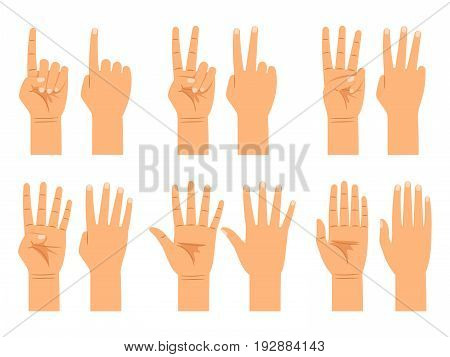 Hand counting isolated on white background. Flat hands count signs, people finger numbers countdown vector illustration