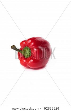One Red Pepper Isolated On White Background