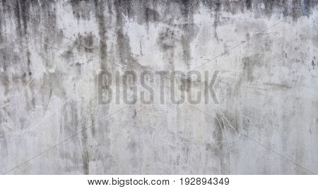 Grungy Weathered White Wall Facade Background