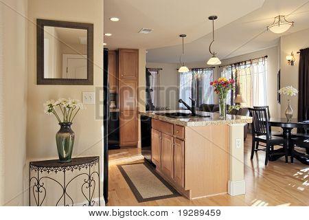 Upscale Condo Entrance and Kitchen