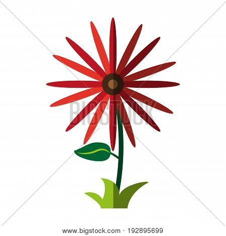 wild flower icon image vector illustration design
