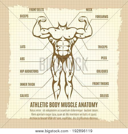 Vintage poster with male athletic body infographics. Vector illustration