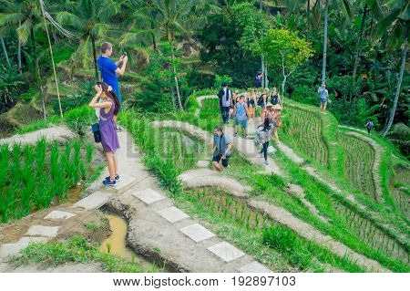 BALI, INDONESIA - APRIL 05, 2017: Unidentified people enjoying the beautiful landscape with green rice terraces near Tegallalang village, Ubud, Bali, Indonesia.