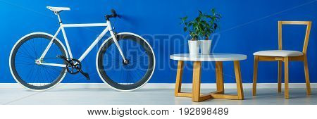 Monochromatic bicycle and stylish furniture in living room