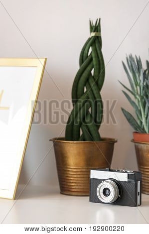Cactus And Vintage Camera