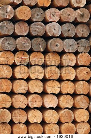 Wood For Lumber Mill