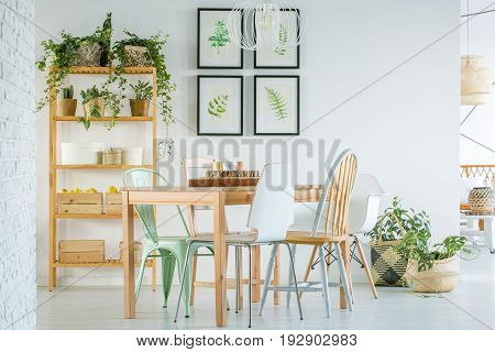 Cozy dining room with wooden furniture and plants
