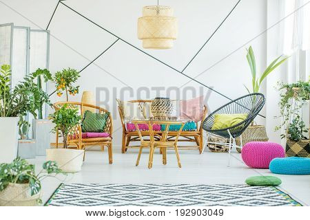 Living room with colorful poufs plants and decorative tape on the wall