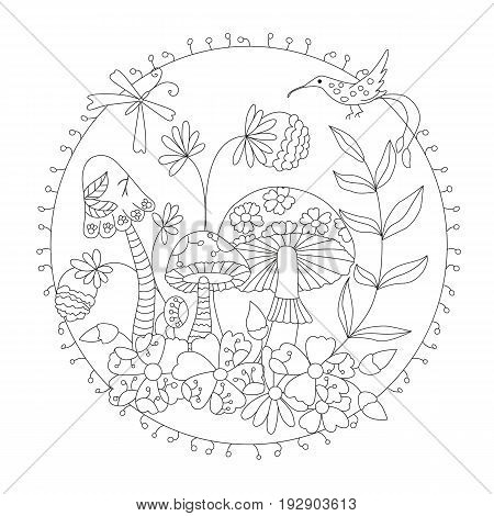 coloring wild mushrooms . vector illustration of a inscribed in a circle.