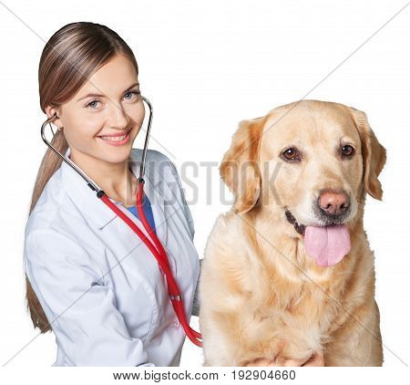Female canine doctor patient medical staff healthy life hospital staff