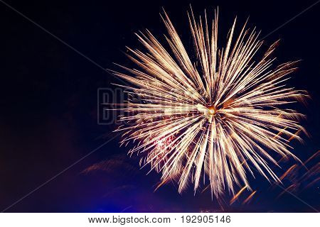 Brightly Colorful Fireworks And Salute Of Various Colors In The Night Sky. Independence Day, 4Th Of