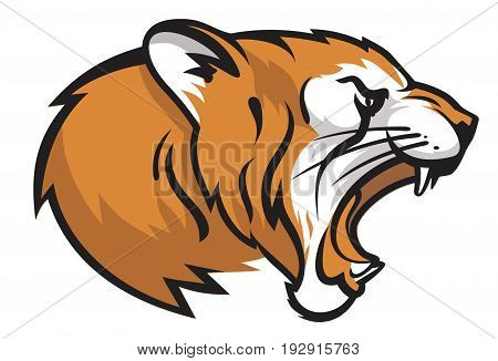head of a roaring tiger vector illustration mascot