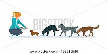 Girl volunteer engaged in charitable affairs in the nursery for dogs. Veterinary care for homeless animals. Vector illustration on white background, people in cartoon style.
