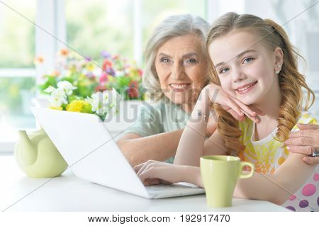 Cute little girl with her grandmother using modern laptop