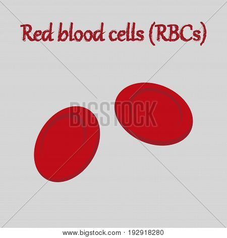 human organ icon in flat style blood cells