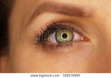 Beautiful female eye close-up. Blinking and various emotions