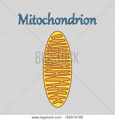 icon in flat style mitochondrion medical bacteria