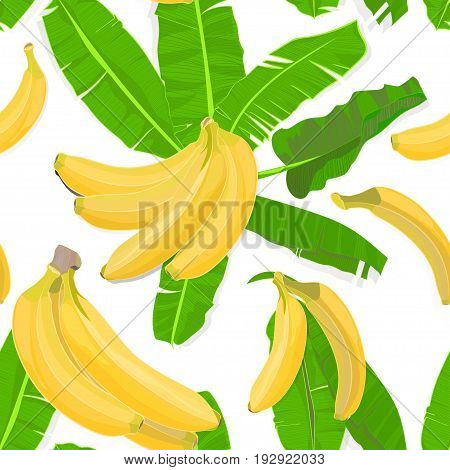 Seamless hand drawn tropical pattern with palm leaves jungle exotic leaf and banana fruit on white background. Fashion textile print summer floral wallpaper. Vector illustration botanical drawing