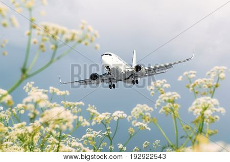 Passenger Commercial Airplane Flies Over Flower Fields At The Airport.