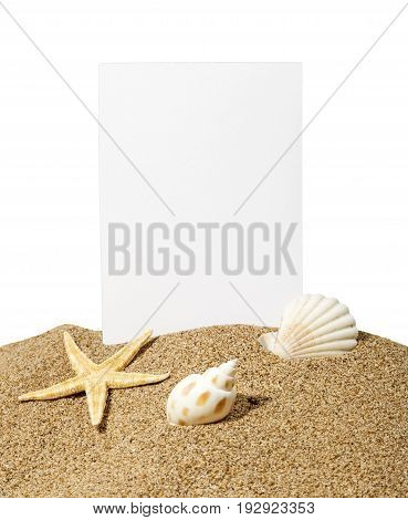 Card star starfish shells blue background colorful