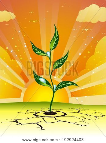 Germination plant. Germination through solid ground. Prolizannya through difficult obstacles. Strong nature.