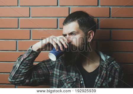 Bearded Drinking Tea Or Coffee In Blue Plastic Cup