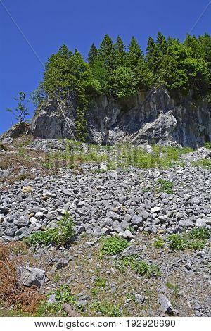 The mid-June rural landscape of the Carnic Alps near Paularo Friuli Venezie Giulia north east Italy.