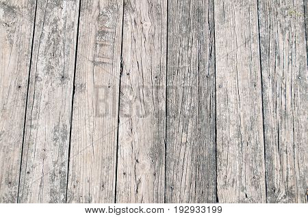 Grey Wood Board. Wood Texture. Wooden Background